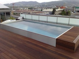 Whirlpool and skimmer pool made of stainless steel