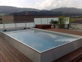 Designer pool made of stainless steel
